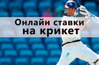 стратегия ставок на крикет