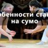 ставки на сумо - стратегия
